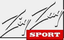 ZigZagSport - Online casino